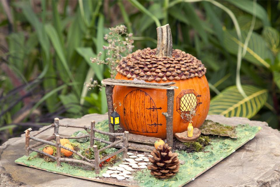 Longue vie la citrouille blogue espace pour la vie for Planificateur jardin