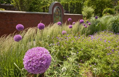Un jardin sans eau blogue espace pour la vie for Biodome insectarium jardin botanique
