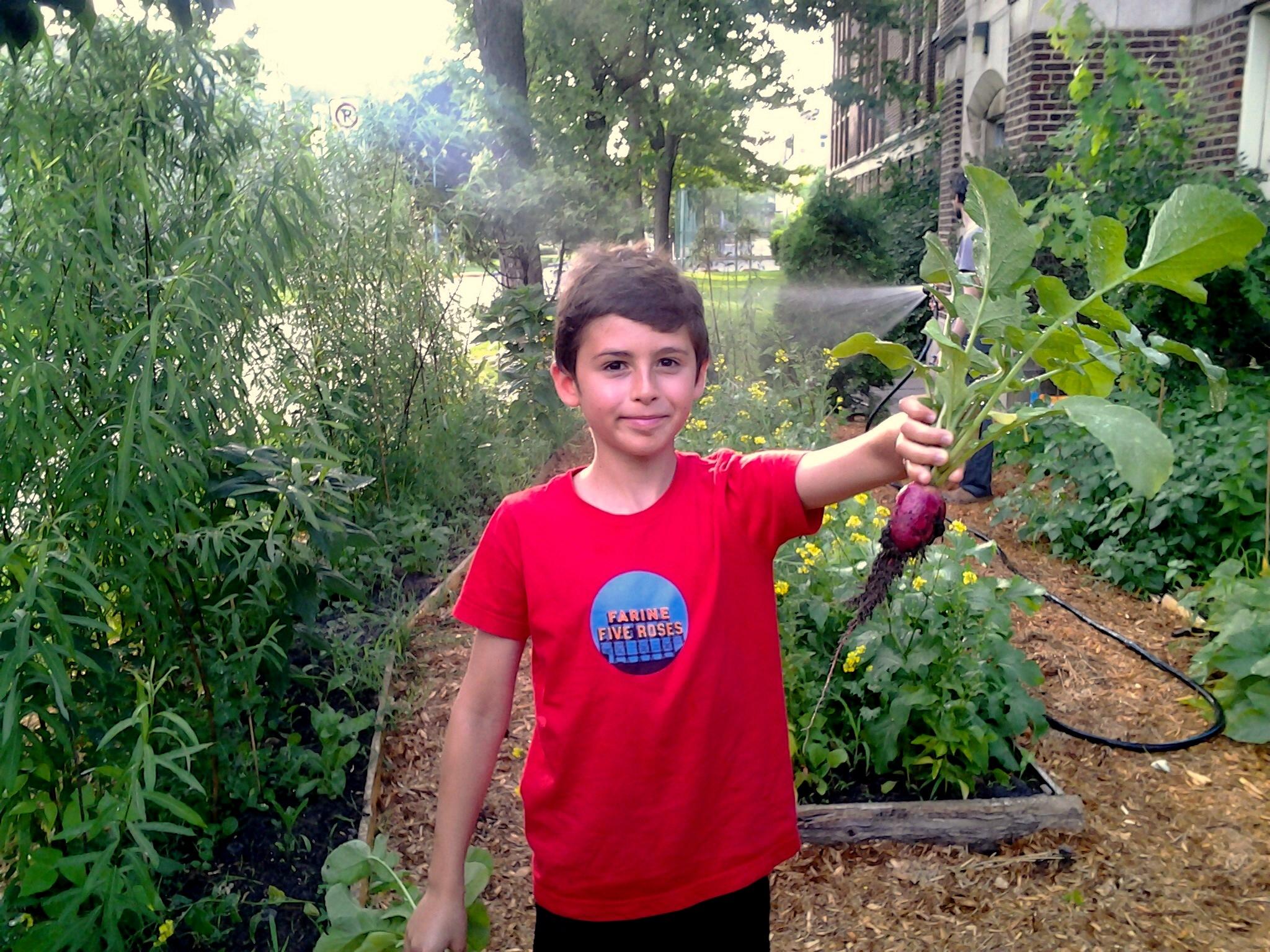 La cour d cole ce terreau fertile blogue espace pour for Planificateur jardin