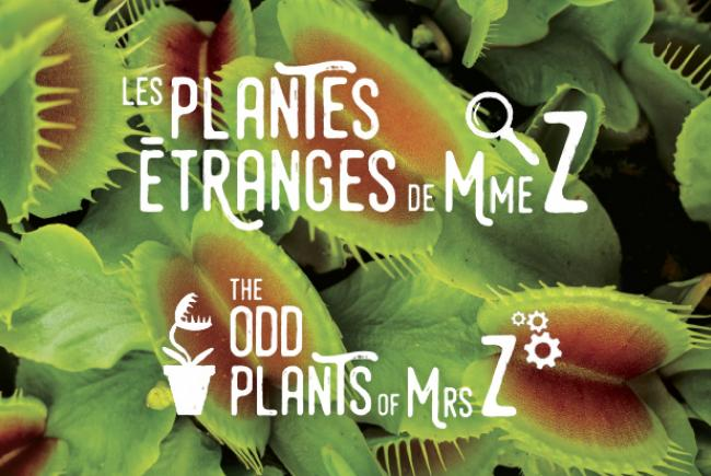 Les plantes étranges de Mme Z