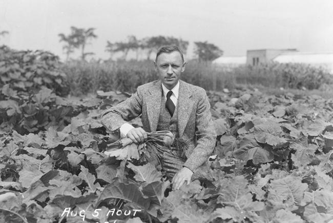 Henry Teuscher in the Jardin botanique de Montréal's economical garden, 1936.
