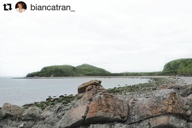 biancatran_