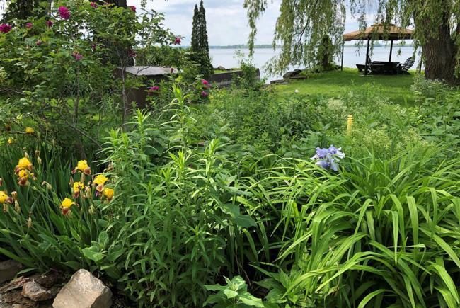 Le jardin du Lac