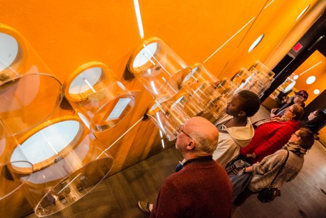 Exposition de météorites au Planétarium Rio Tinto Alcan