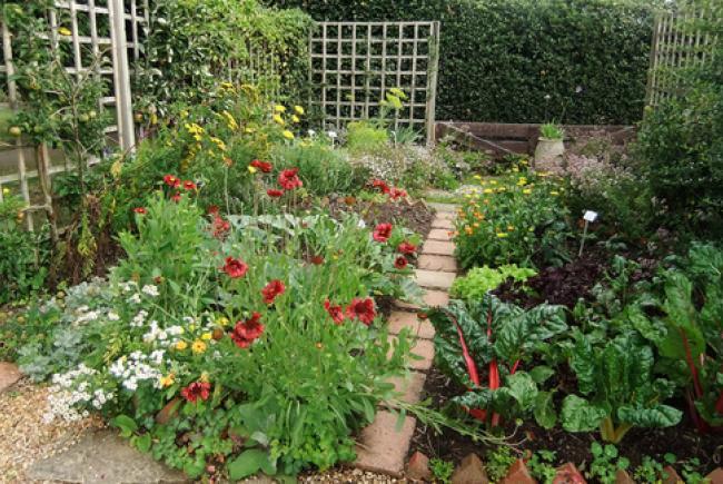 Petit jardin biologique © cc flickr (Julie Gibbons)