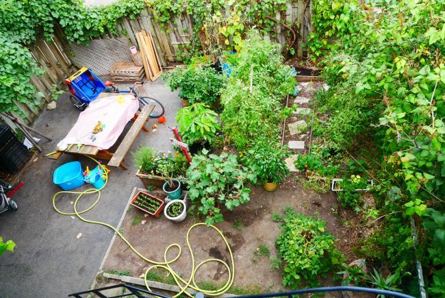 Jardin vue d'ensemble