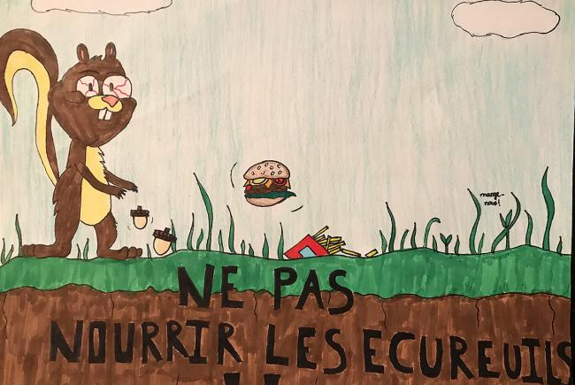 Winning entry in the Feeding the squirrels category of the drawing contest: Conserving my neighbourhood woodlot.
