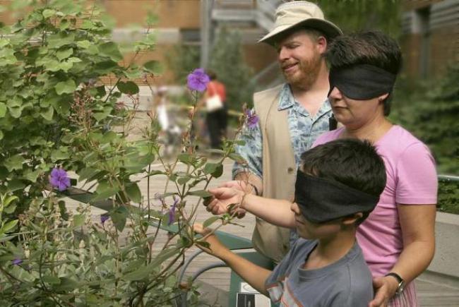 Visite de la Cour des sens au Jardin botanique