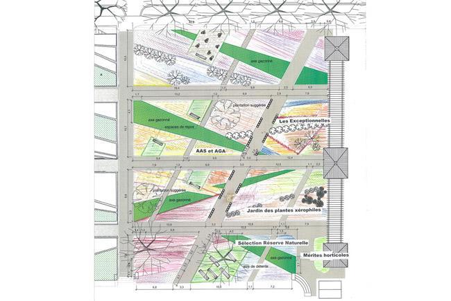 Plan Jardin des nouveautés © Jardin botanique de Montréal