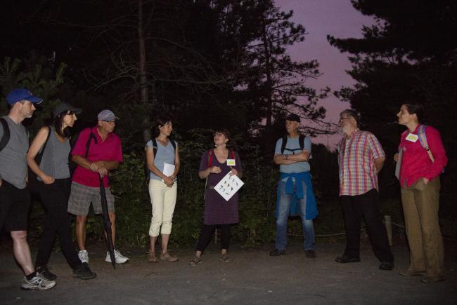 Promenade à l'aubePromenade à l'aube / Dawn Stroll
