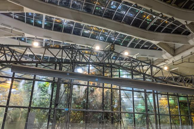 Installation in the Tropical Rainforest ecosystem, just below the glass roof.