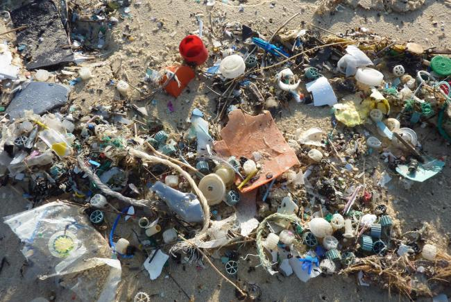 Sea coast plastic litter