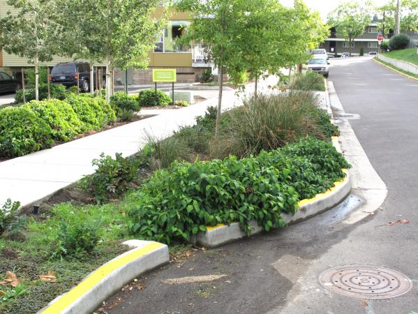 An example of rainwater management in Portland, Oregon