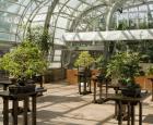 Jardin botanique de Montréal (Michel Tremblay)