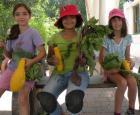 Jeunes filles et leurs récoltes
