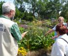 Guide bénévole au Jardin botanique © Espace pour la vie (Karine Vendette)