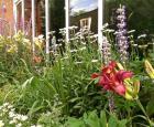 Le Jardin en Chanteur de Jean-Jacques © Espace pour la vie