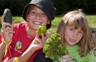 Jardins-jeunes au Jardin botanique de Montréal – Crédit : Michel Tremblay