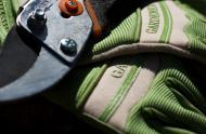 carrousel_gants-secateur_cc_flickr_nomadic_lass_5725078838.jpg