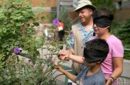 Visiteurs à la Cour des sens © Jardin botanique de Montréal (Michel Tremblay)