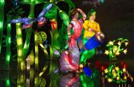 Jardins de lumière 2013 © Espace pour la vie (Michel Tremblay)