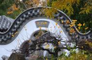 Jardin de Chine - automne © Jardin botanique de Montréal (Michel Tremblay)