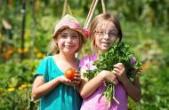 Les Jardins-jeunes © Espace pour la vie (Martine Larose)