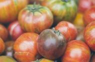Tomates, variétés ancestrales
