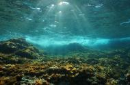Underwater sun through the water surface seen from a rocky bottom.