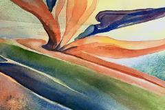 L'observation, la pleine conscience et la beauté de l'art botanique