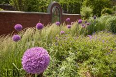 © Montréal Botanical Garden (Michel Tremblay)