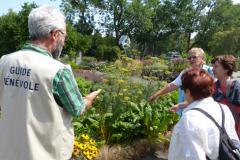 Volunteer guide at the Botanical Garden © Espace pour la vie (Karine Vendette)