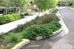 Un exemple de gestion des eaux pluviales à Portland, Oregon