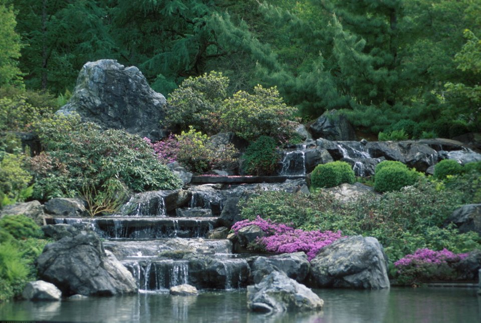 Jardin japonais espace pour la vie for Cascade jardin japonais