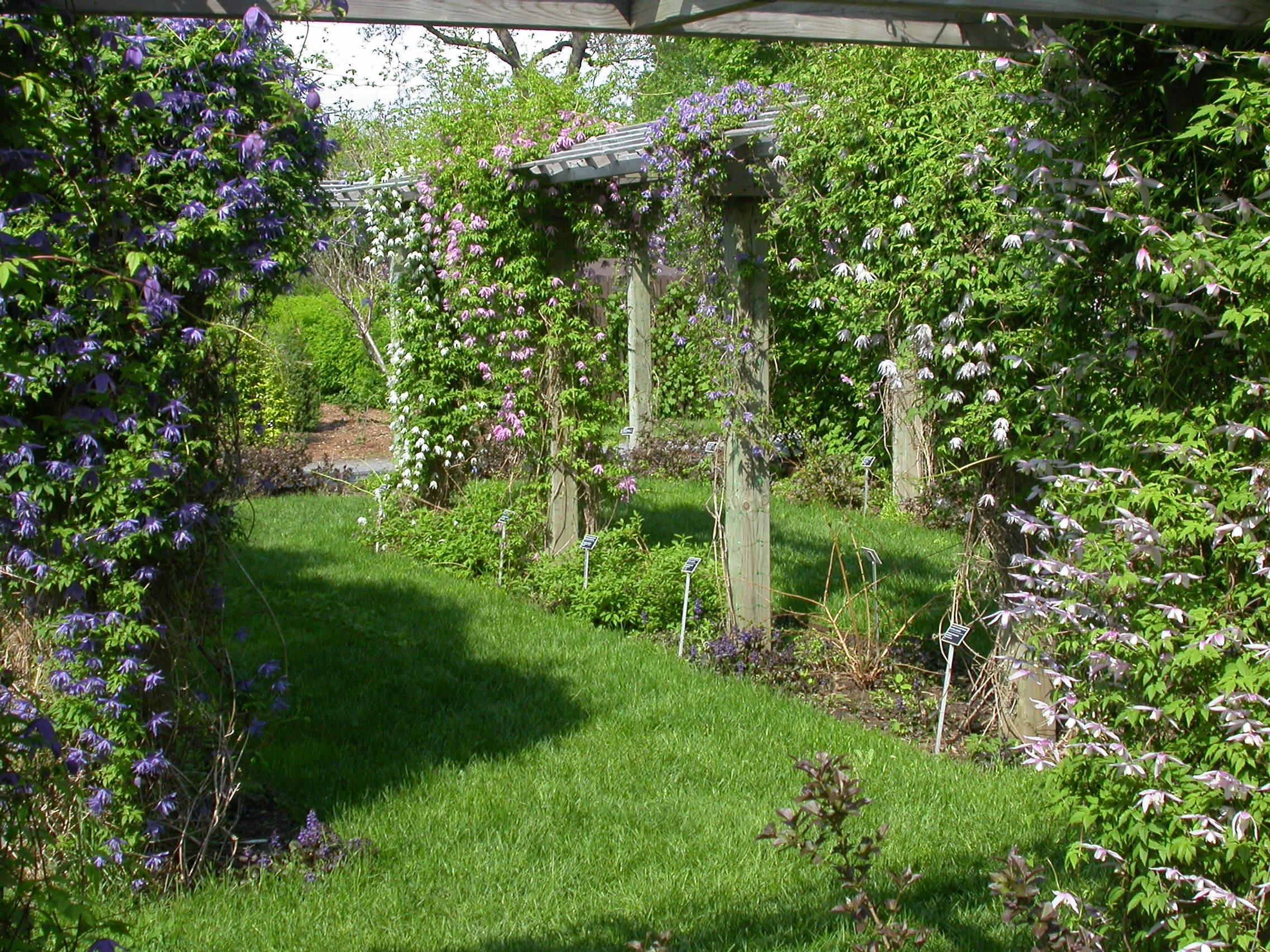 Arrosage et taille espace pour la vie for Planificateur jardin