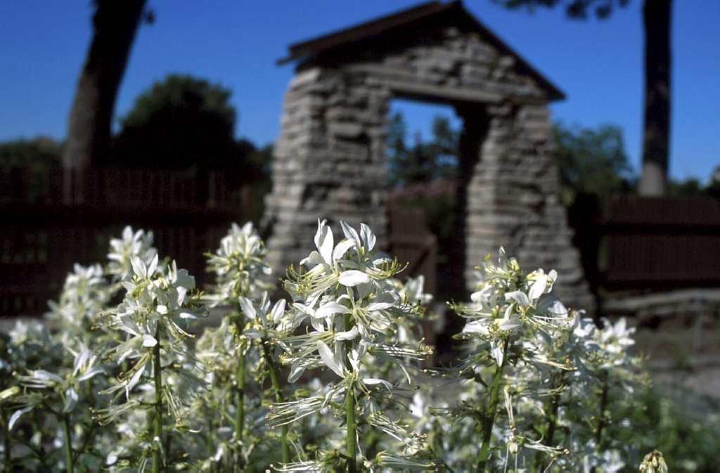 Jardin de monast re espace pour la vie for Planificateur jardin