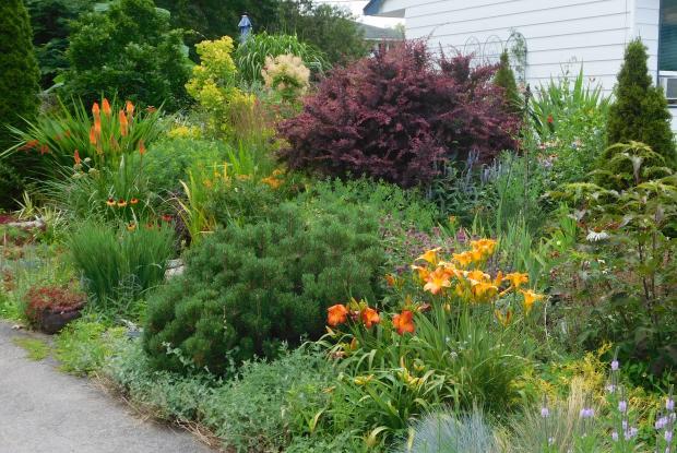 Programme mon jardin espace pour la vie espace pour la vie for Planificateur jardin