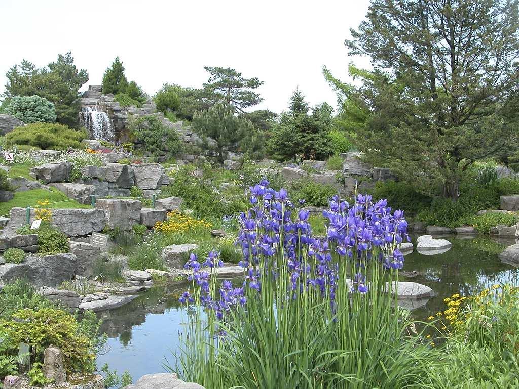 Agencement de la rocaille espace pour la vie for Planificateur jardin
