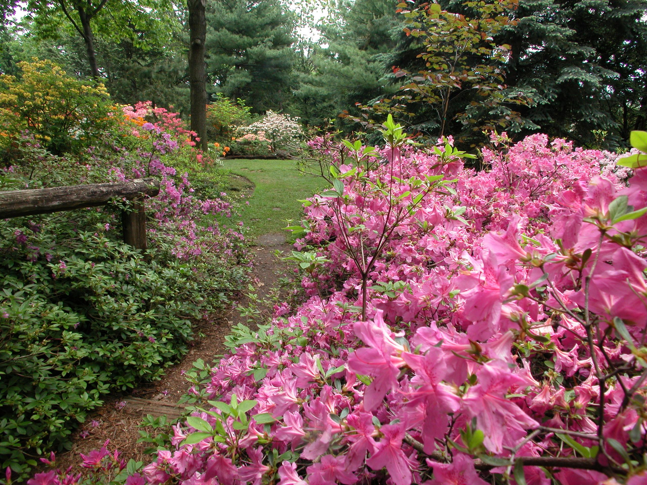 Description des fertilisants espace pour la vie for Planificateur jardin