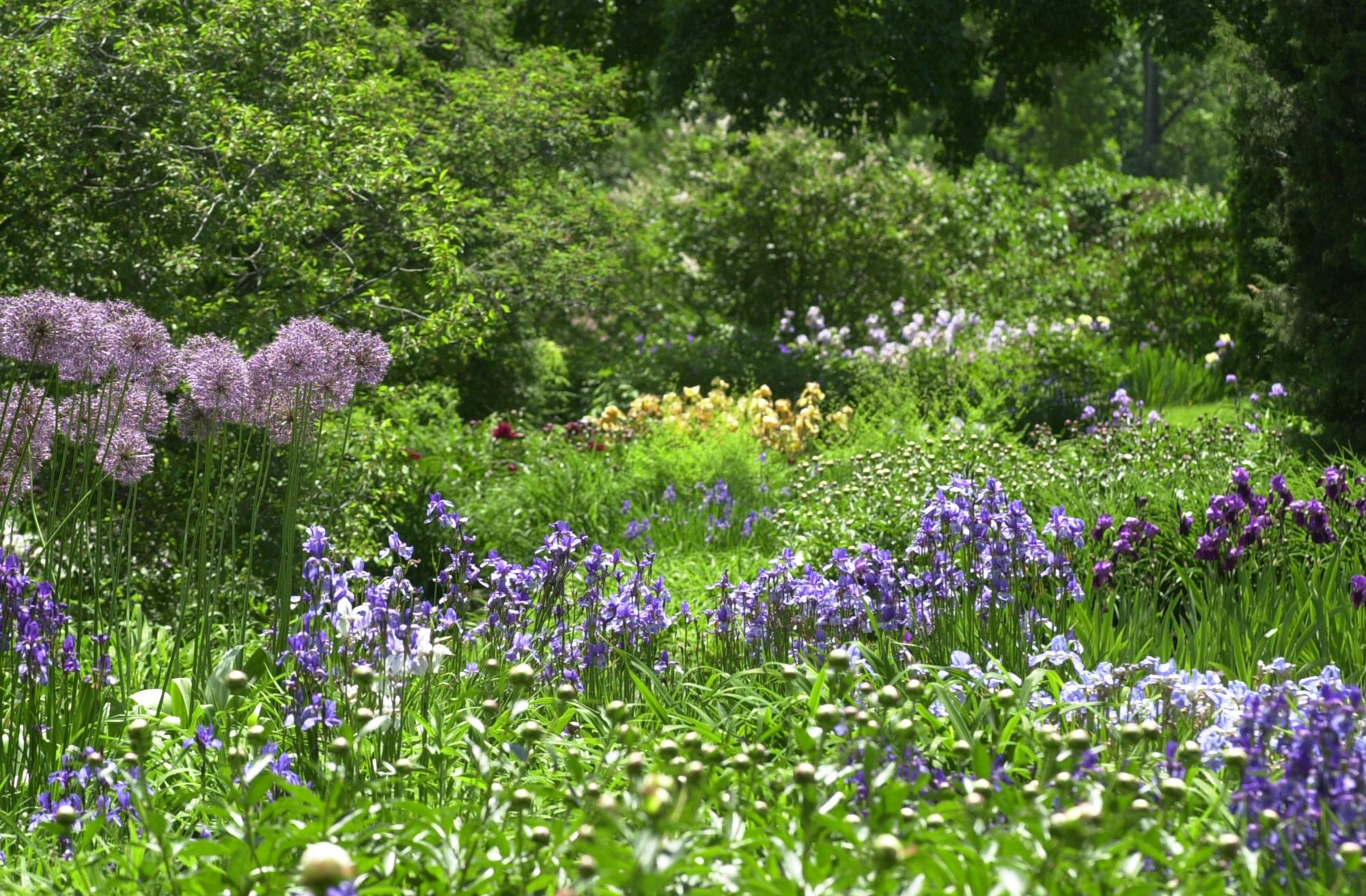 Jardiner sans pesticides espace pour la vie for Garden information sites