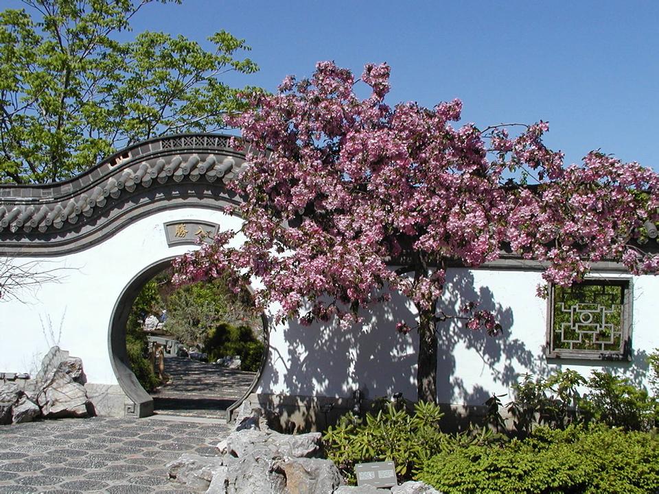 Jardin de chine espace pour la vie for Planificateur jardin