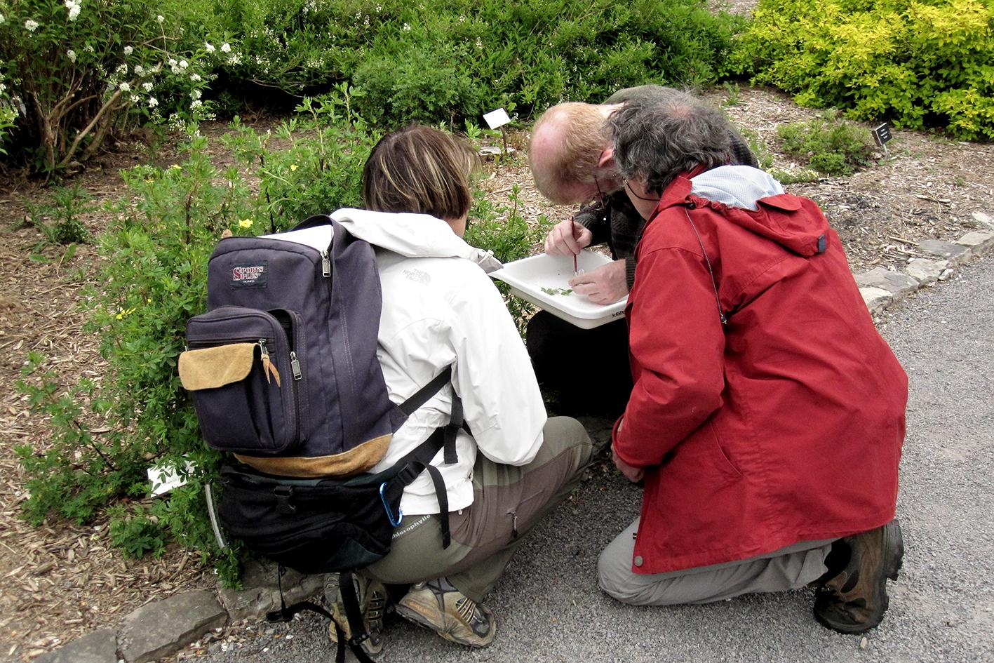 Planifier sa sortie espace pour la vie for Planifier son jardin