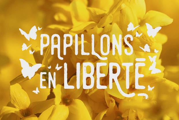 Papillons en libert espace pour la vie for Papillons jardin botanique 2016