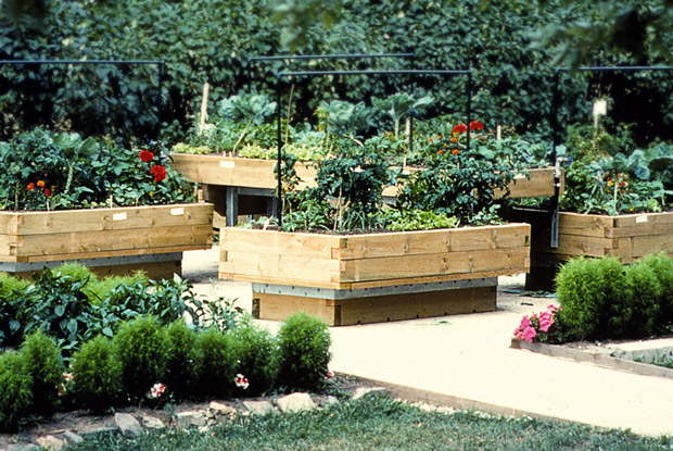 Raised bed vegetable garden space for life for Potager sureleve