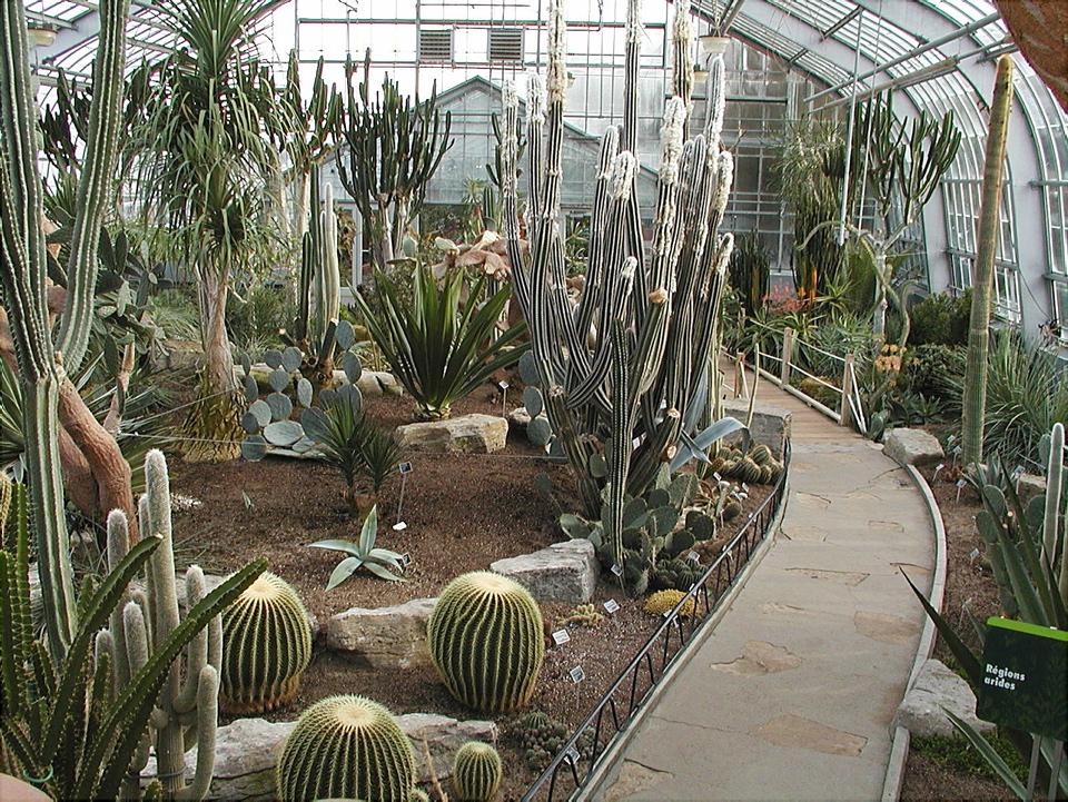 Serre des r gions arides espace pour la vie - Jardin botanique de montreal heures d ouverture ...