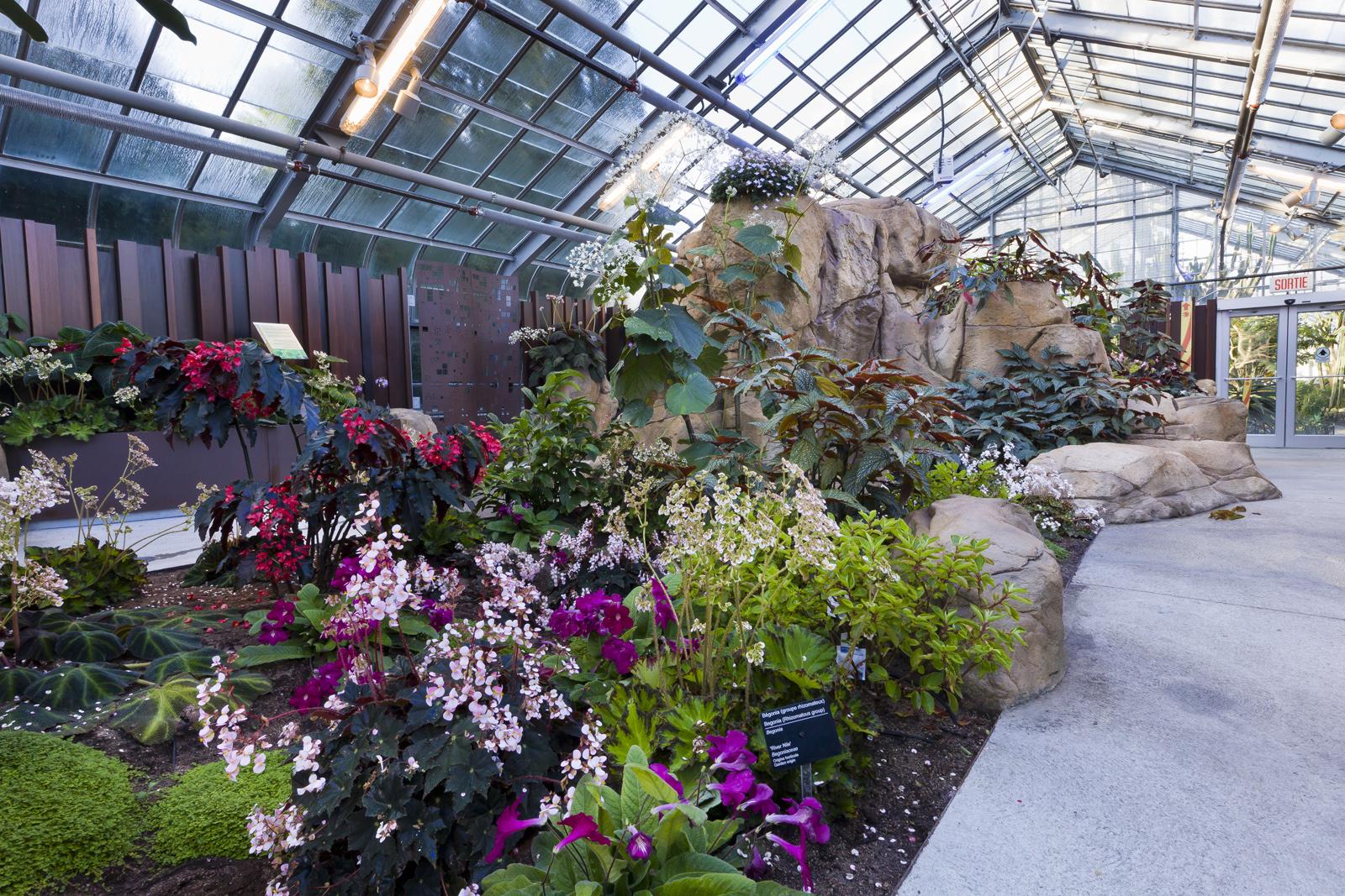 Actions au jardin botanique espace pour la vie for Jardin botanique montreal tarif