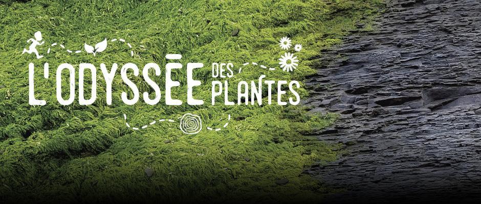 L'Odyssée des plantes -  carrousel