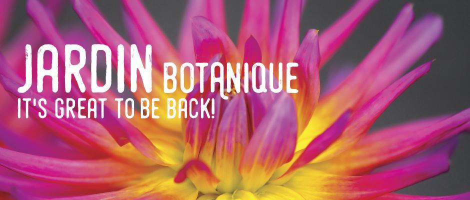 Jardin Botanique - special measures - Carrousel