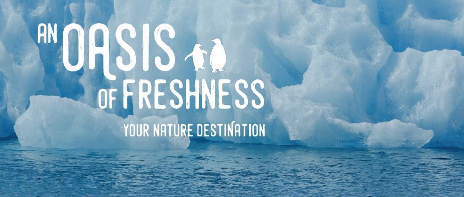 Biodôme - An oasis of freshness