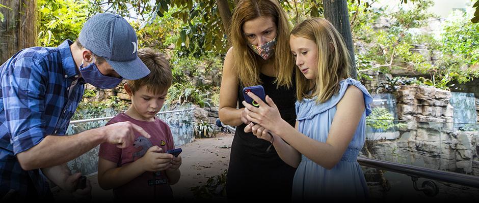 Une application mobile à télécharger - carrousel